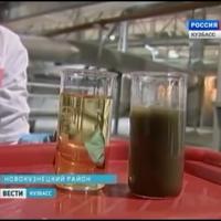 Образцы сточных вод от свинофермы до и после очистки с помощью BIOMEMBRAT®МБР (Россия 1)