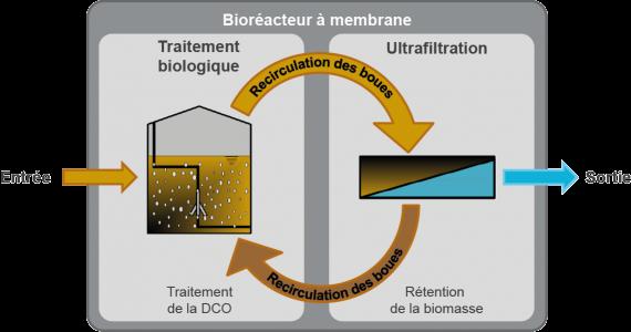Bioréacteur à membrane